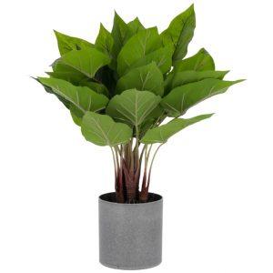 Umělá květina LaForma Anthurium - Výška50 cm- Průměr 40 cm