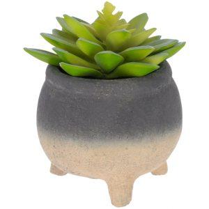 Umělá květina LaForma Sedum lucidum M - Výška14 cm- Průměr 14 cm