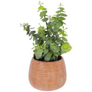 Umělá květina LaForma Eucalyptus L - Výška25 cm- Průměr 16 cm