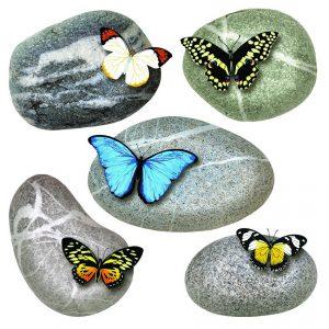 Samolepicí dekorace Butterflies on Stones